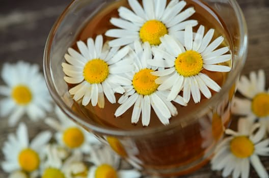 chamomile-chamomile-blossoms-medicinal-herb-herbal-medicine.jpg