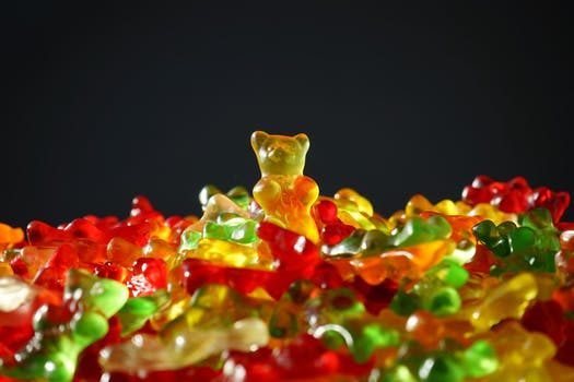 gold-bear-gummi-bears-bear-yellow-55825